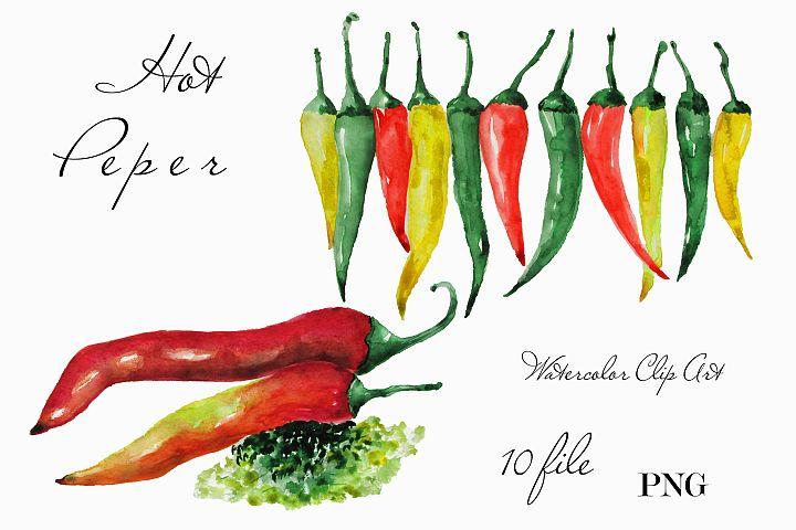 Kitchen wall decor Watercolor clipart Hot Pepper