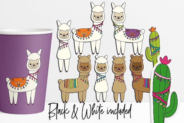Alpaca and Llama Illustrations