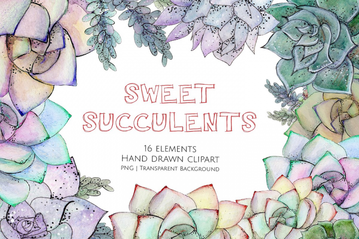 Sweet Succulents Watercolour Graphics and Clipart