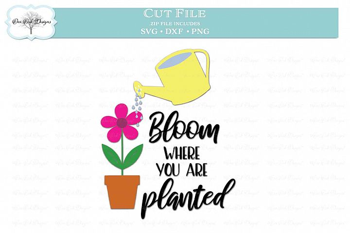 Bloom Where You Are Planted - Garden Quote
