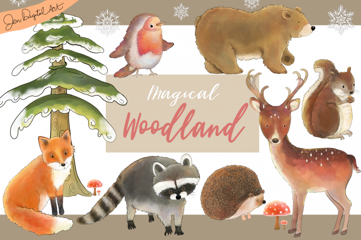 Magical Woodland -11 illustrations|animals and elements