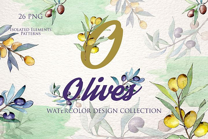 Olive branch green watercolor PNG