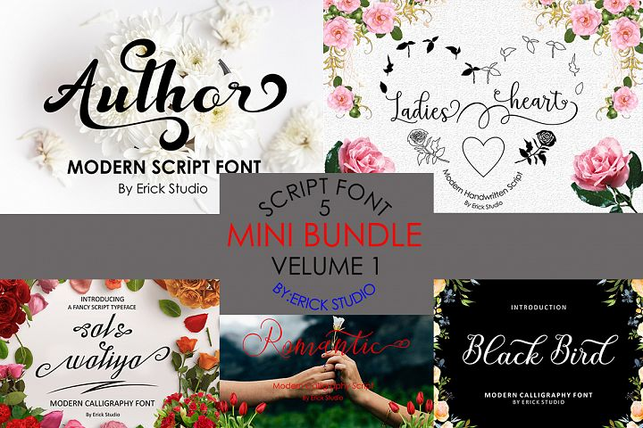 MINI BUNDLE FONT SCRIPTS