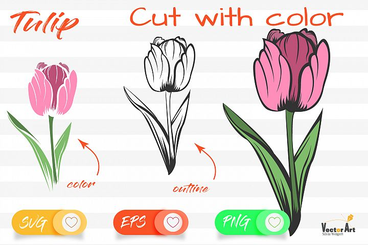 Tulip Flower - Cut File with 2 Layers