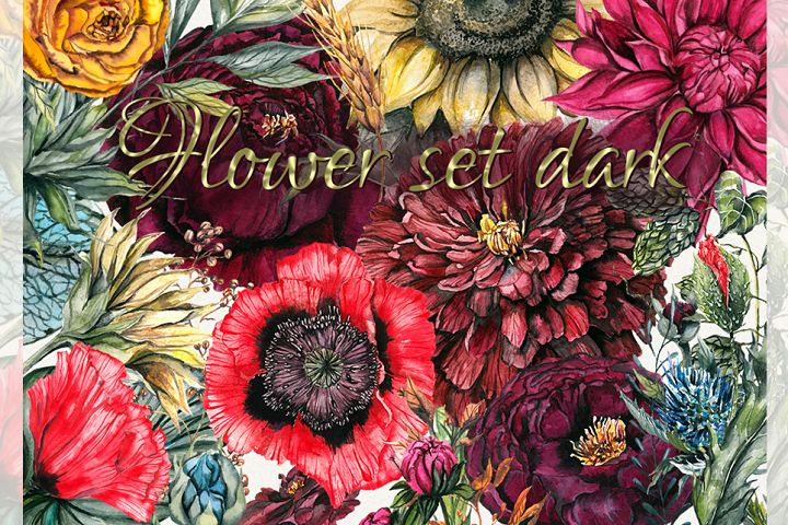 Flower set, Peony clipart, flower clipart, floral elements