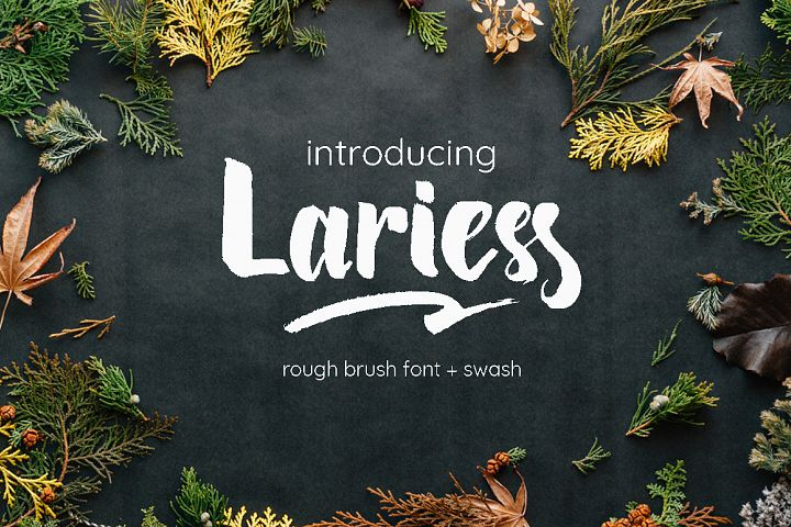 Lariess - Brush Font With Swashes