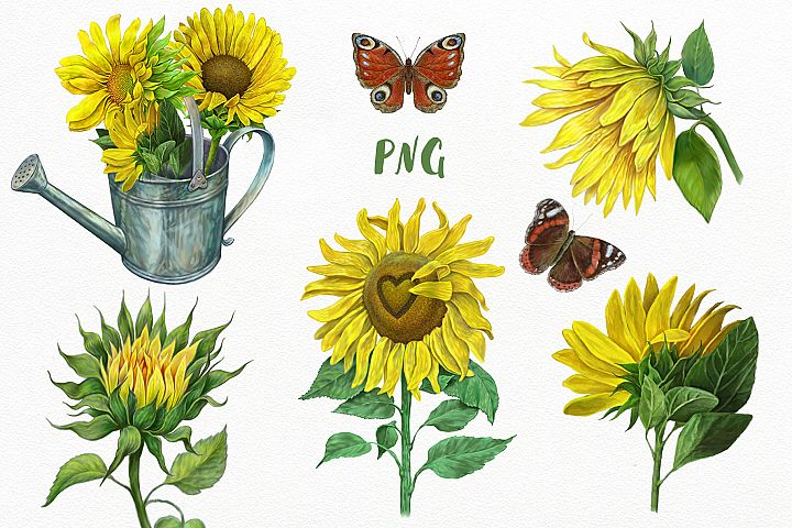 Sunflowers Clipart, Yellow flowers sunflower,