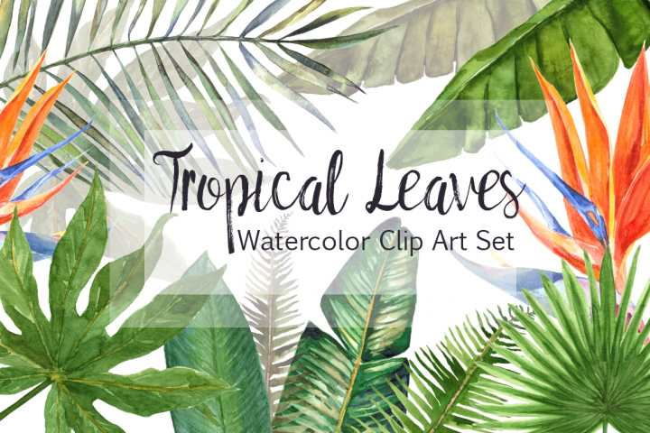 Watercolor Tropical Leaves Clip Art Set
