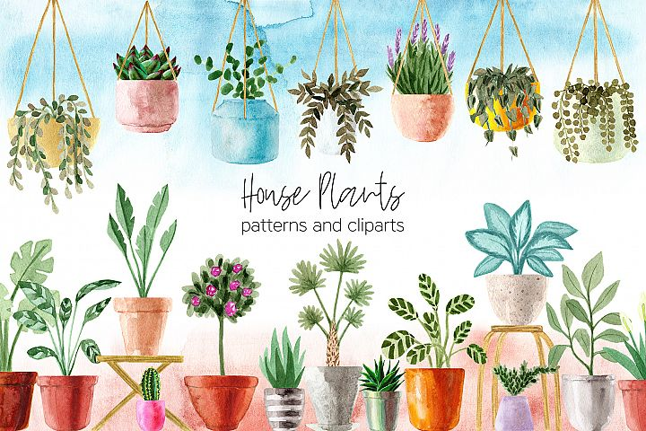 Watercolor House Plants Patterns