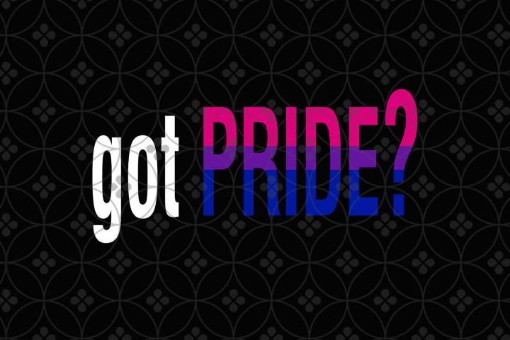 Lgbt pride bundle svg,, LGBT pride gift, LGBT SVG bundle Gay