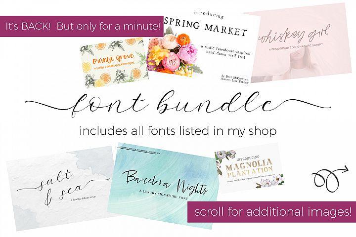 Entire Shop Font Bundle