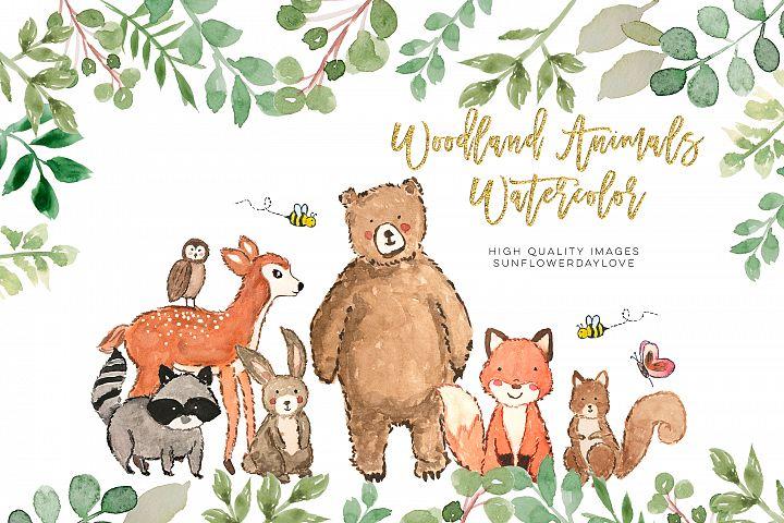 Nursery woodland watercolor clip art, Bear clipart