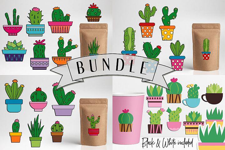 Succulent cactus clip art illustrations bundle