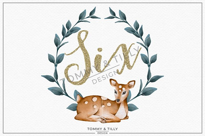 Six Birthday Deer Wreath - Sublimation PNG Clipart