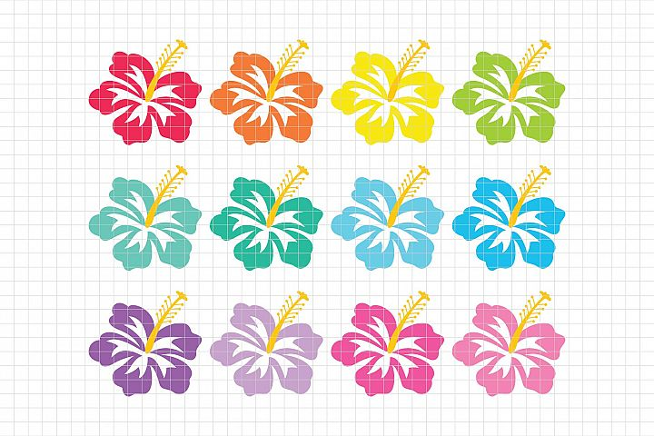 Tropical Hibiscus-Digital Clipart LES.CL73