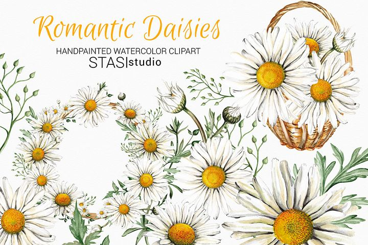 Watercolor Daisies Clipart