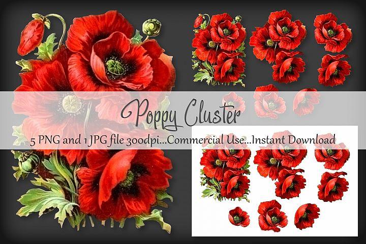 Poppy Cluster Bouquet Vignette Clipart