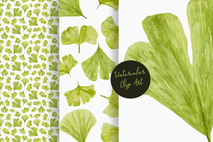 Watercolor Ginkgo Clip Art and Pattern