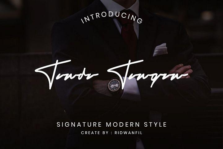 Tanda Tangan font - Signature Modern Style