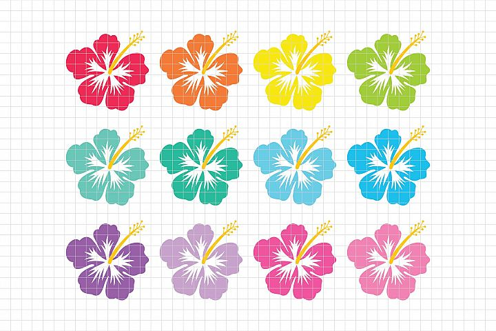 Hawaiian Hibiscus-Digital Clipart LES.CL72