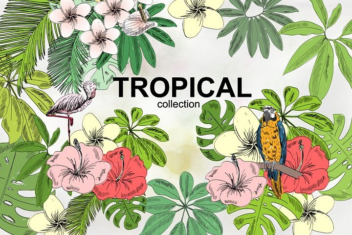 Tropical collection.