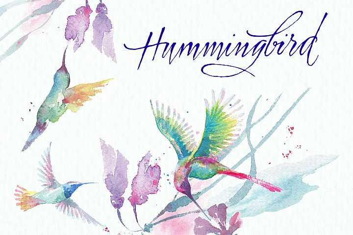 hummingbirds & tropical flowers watercolor clipart