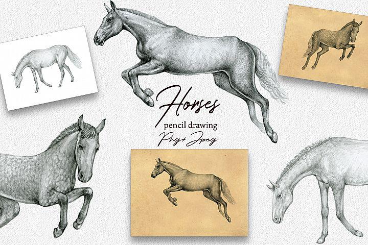 Horses Clipart.Hand Drawn