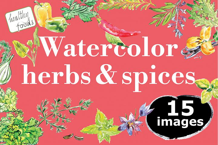Watercolor herbs & spices collection