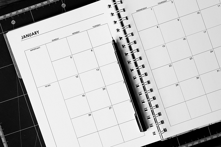 Printable Classic 2020 Monthly Planner Classic