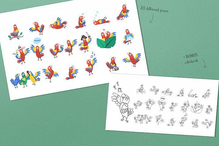 Parrot Bundle example 4