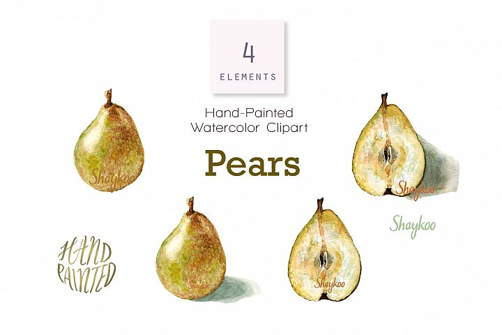 Pear Watercolor Clipart, Whole and Half Pear With Shadow