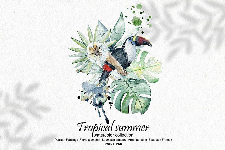 Tropical summer. Watercolor set.