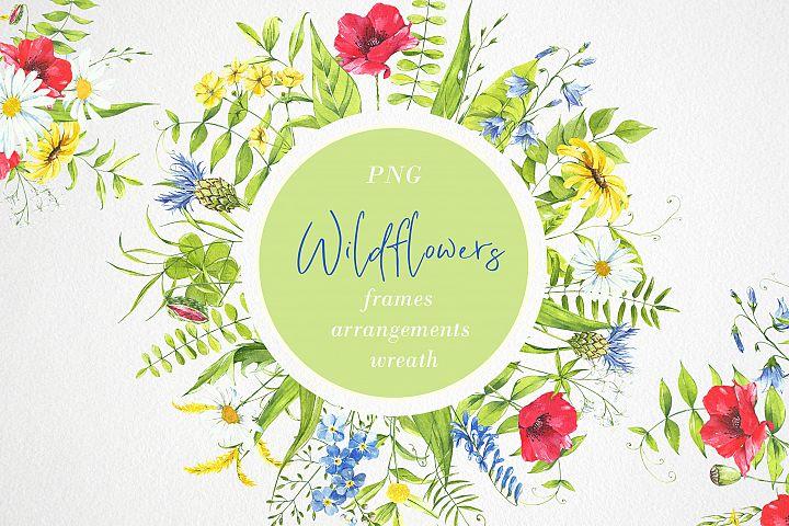 Watercolor flower clipart. Wildflowers, plants. flower frame