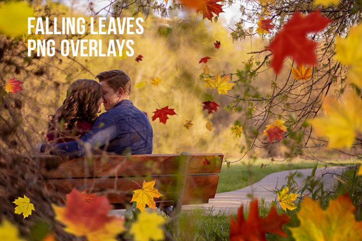 Falling Leaves PNG Overlays