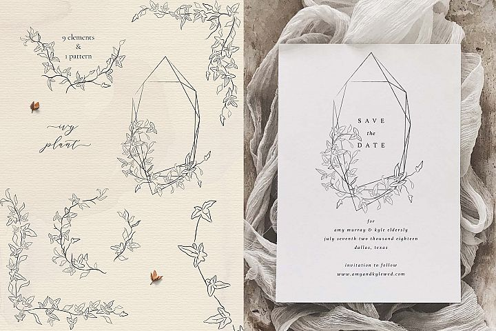 Line drawing delicate Ivy plant floral frames and wreaths