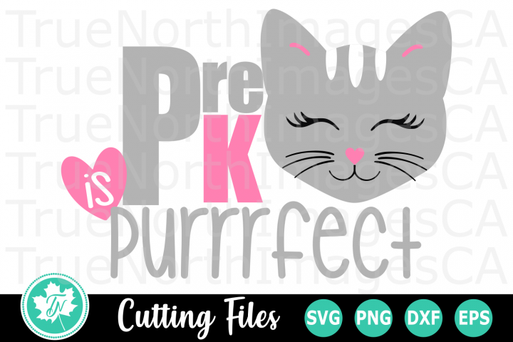 Pre K is Purrrfect - A School SVG Cut File