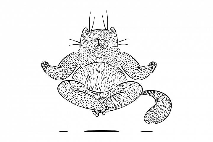 Big fluffy cat meditates and levitates.