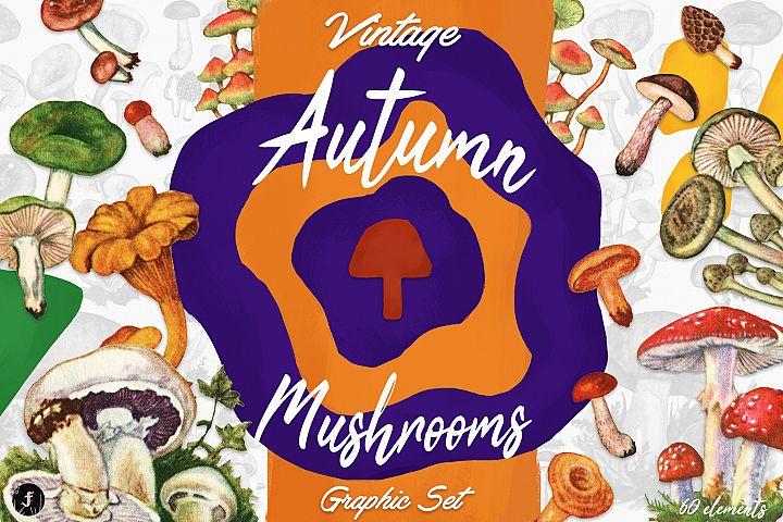 Vintage Autumn Mushrooms