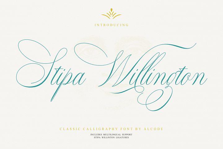 Stipa Willington