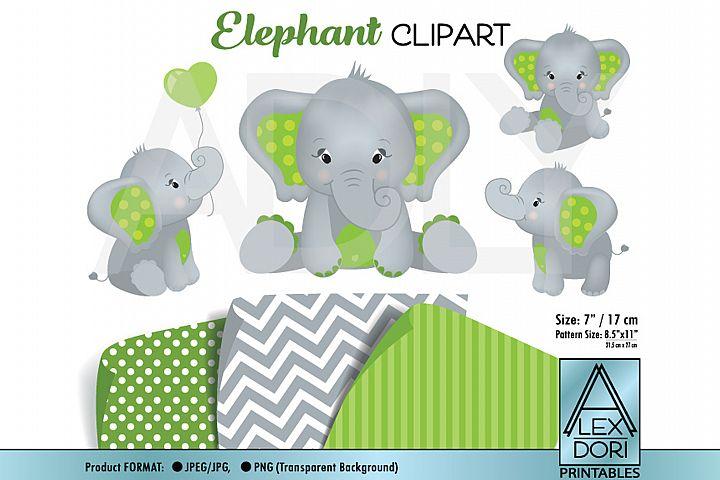 Cute Baby Elephant in JPEG