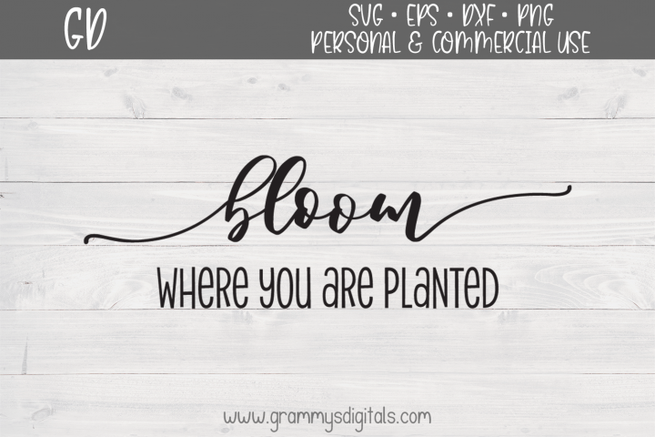 Bloom Where You Are Planted SVG File