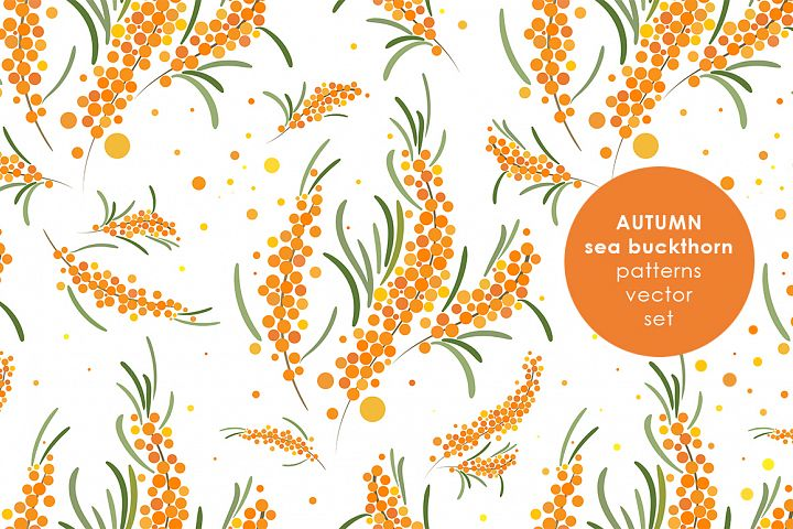 Sea buckthorn patterns set.