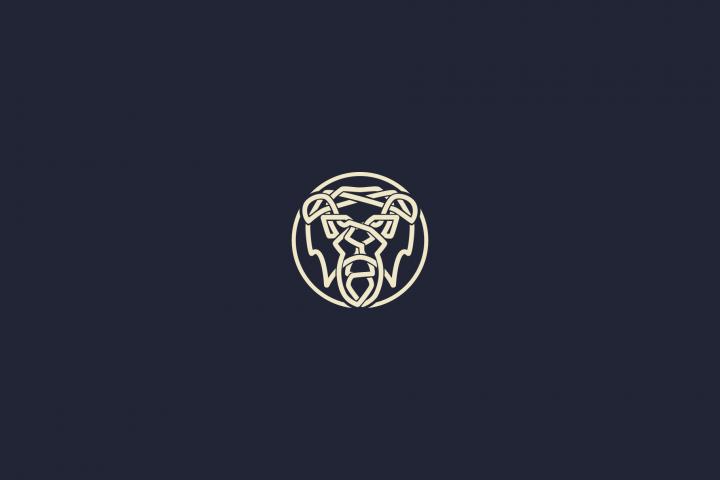 Smart Celtic Lion Knot