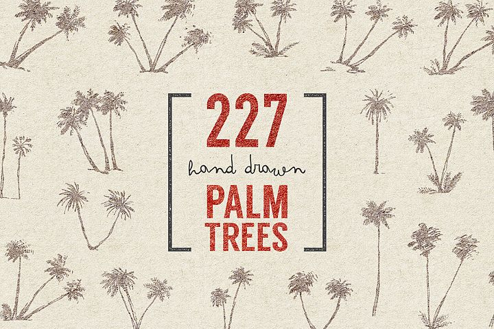 227 hand drawn palms + BONUS