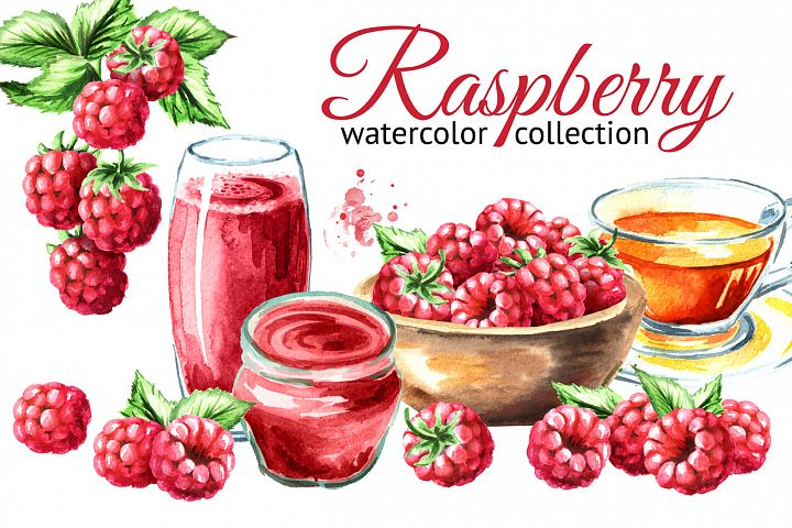 Raspberry. Watercolor collection