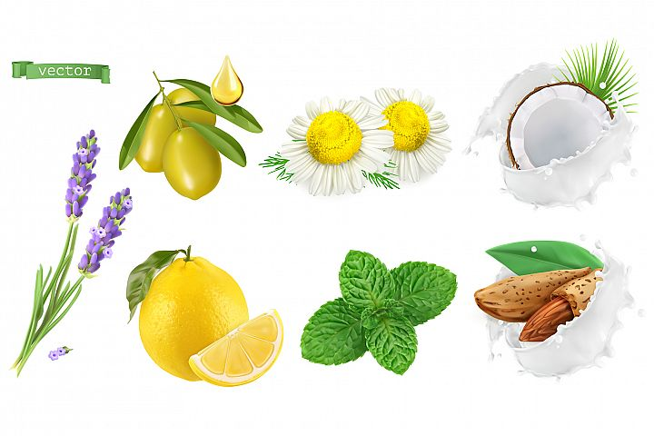 Skincare cosmetics. Lavender, chamomile, mint, almond, olive