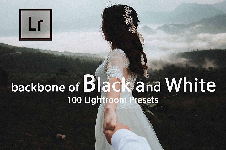 Backbone of Black and White Lightroom Presets