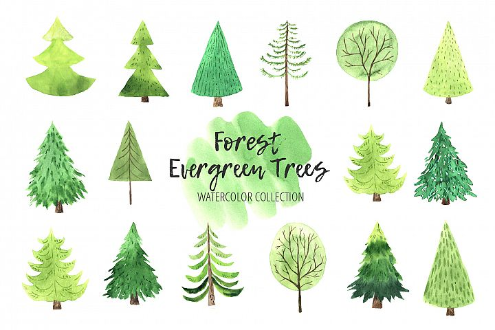 Watercolor Evergreen Trees Set