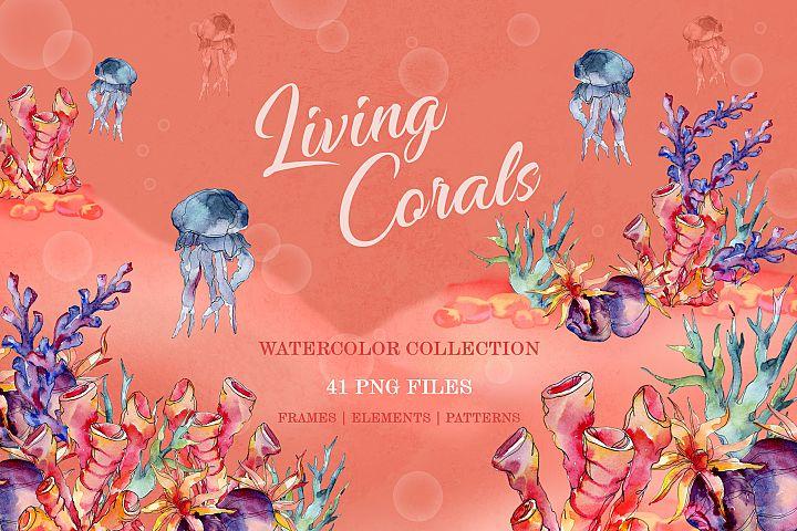 Living Corals Watercolor png
