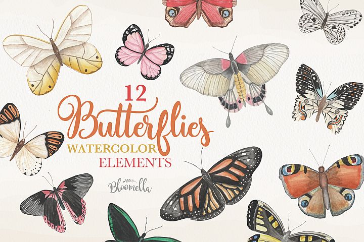 Butterfly Collection 12 Watercolor Clipart Elements Insect